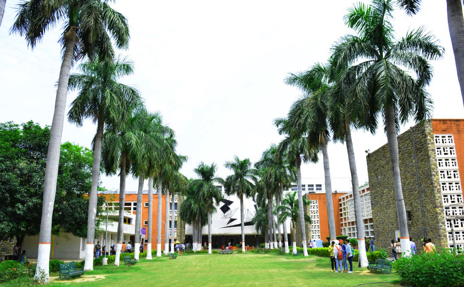 Lawn inside College Campus